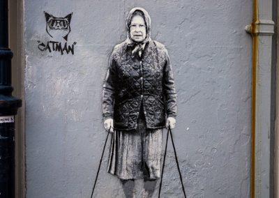 Catman strikes again!